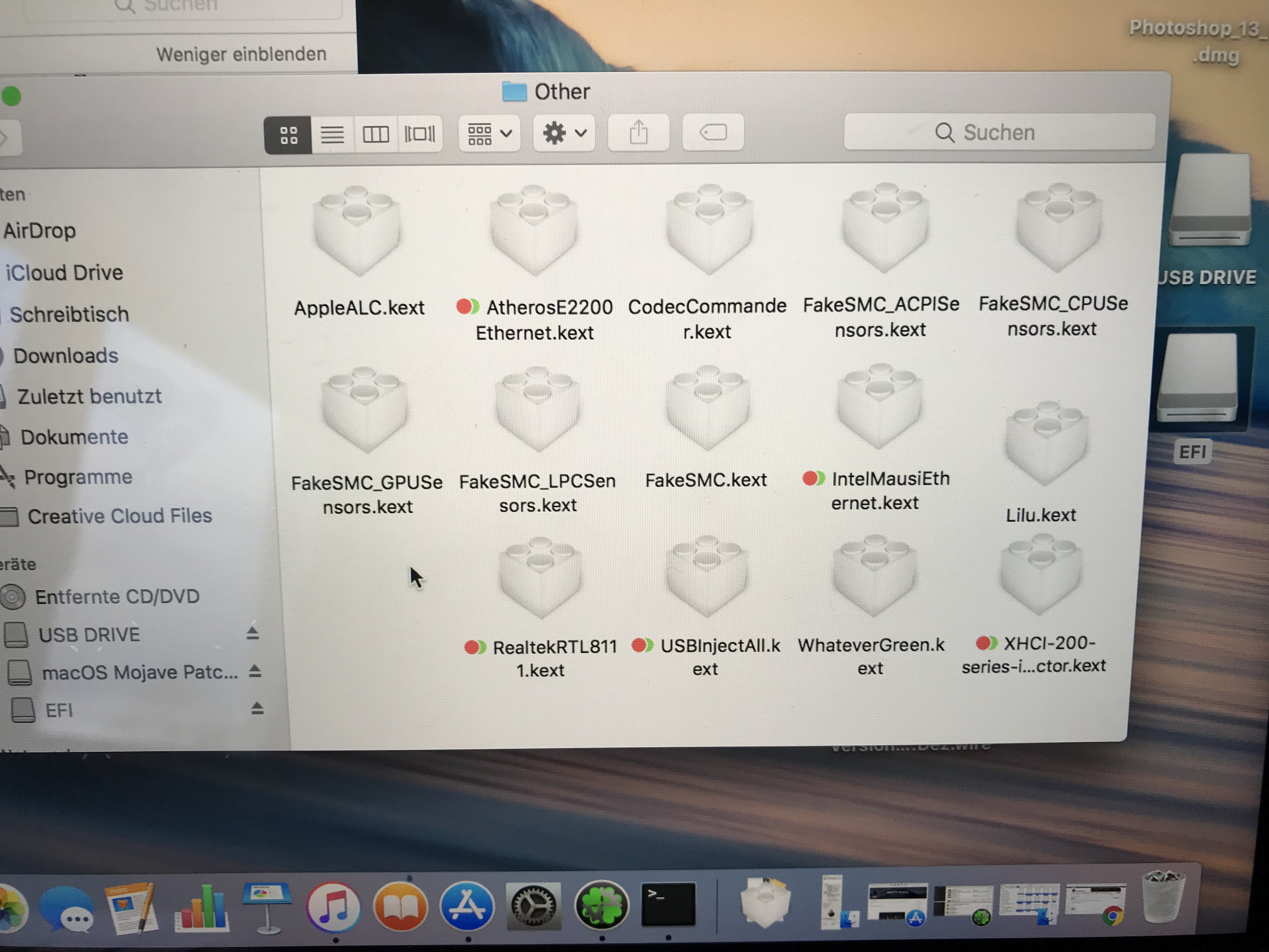 Mojave wont install  Does somebody know what this Verbose